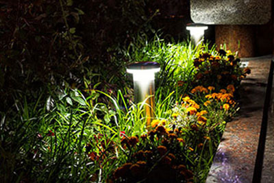 led-illuminated-garden